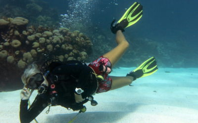 Diving Cozumel: Reef