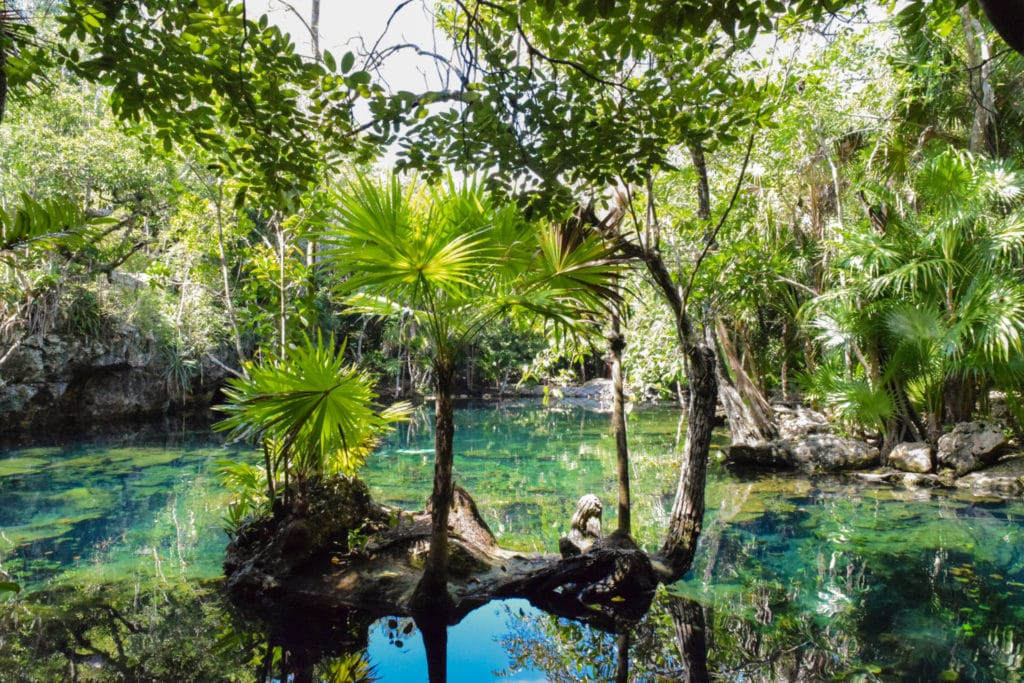 Yucatan: Cenotes in Mexico: Chichin Ha