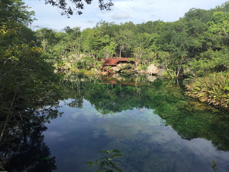Cenote in the Riviera Maya: Eden