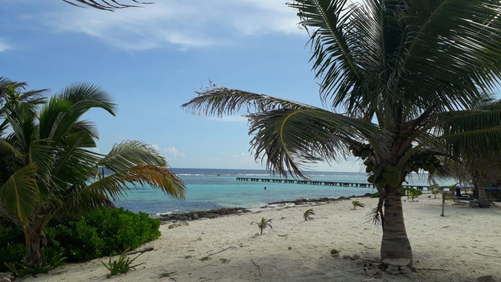 Excursions Costa Maya beaches Mahahual
